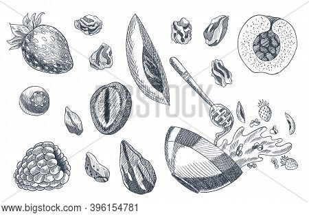 Granola Coloring Engraved Style Illustration. Various Berries, Fruits And Nuts. Homemade Delicious S