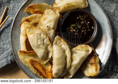 Homemade Gyzo Asian Pork Potstickers