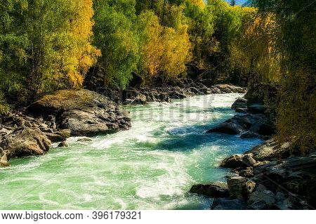 The Mountain River Flows Over The Rocks. The Rivers Are Altai. Nature Is Altai.