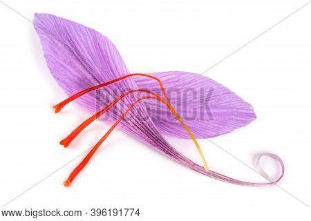 Saffron Petal With Stigmas  Isolated On White Background