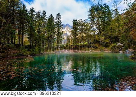 Slovenia, Julian Alps. Picturesque shallow lake with glacial greenish water, covered with fallen leaves. Light fog rises above the water. Autumn forest in a mountain valley