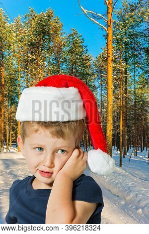 Handsome little boy with blue eyes is smiling. Lapland. The snow-covered coniferous forest. The concept of extreme and active tourism