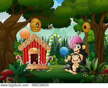 The Chimpanzee Having Fun At Candy Land