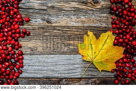 Autumn background with weathered wood, cranberry and leaf