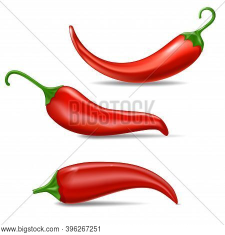 Realistic Fresh Red Hot Chili Pepper. Kitchen Organic Vector Taste Chili Mexican Pepper Set Of Three
