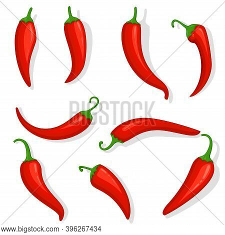 Fresh Red Hot Chili Pepper. Kitchen Organic Vector Taste Chili Mexican Pepper Set Of Three Cartoon P
