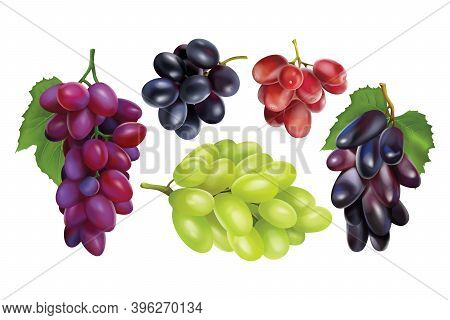 Realisitc Grapes Set. Collection Of Realism Style Drawn 3d Miscellaneous Branches Of Green Blue Tabl