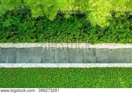 Top View Image Of Footpath Or Walkway Flaked With Green Grass And Tree In Garden.