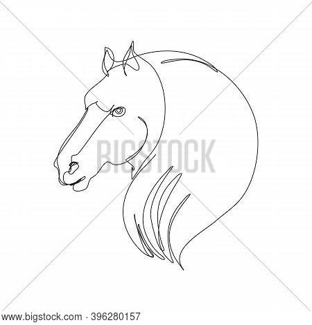 Continuous Line Art, Hand Drawn Horse Head. Mustang Portrait, Contour Stallion.