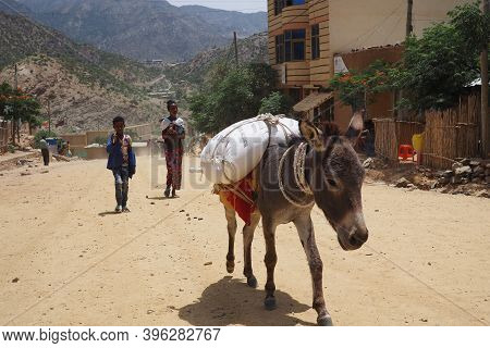 Tigray, Ethiopia - 14 August 2018. :donkey And Pedestrians In A Small Town In Tigray Region Of Ethio