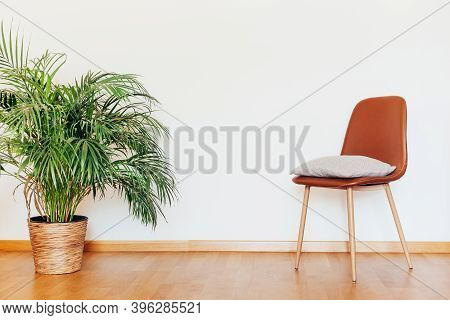 Indoors Flat Wall Mockup With Green Potted Houseplant Home Decoration And Chair With Clothes In Mini