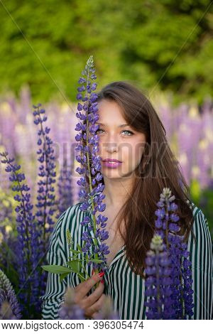 Gorgeous Beautiful Girl Touched Lupin Flower To Her Face Sensually Looking At Camera On Blooming Mea