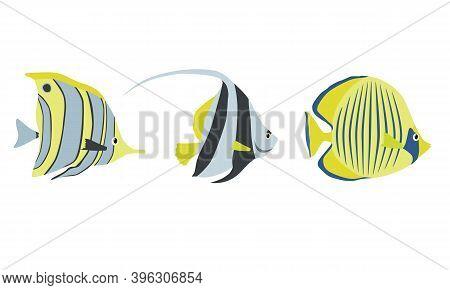 Set Of Tropical Sea Fish Color Design Flat. Ocean Fish Animal, Underwater Life Sea Fish In Cartoon S