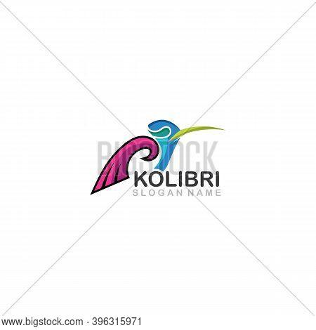 Abstract Colorful Colibri Bird Logo Line Outline Creative Vector Icon Illustration Template