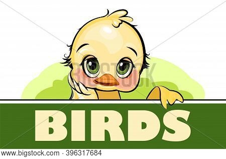 Little Duckling. Funny Chick. Cute And Funny Baby Bird. The Isolated Object On A White Background. I