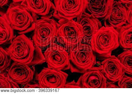 A lot of red roses background, Valentines day gift concept