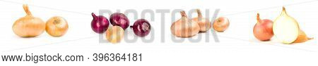 Set Of Bulb Of Onion Isolated On A White Background Cutout