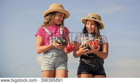 Vegetables Market. Happy Sisters Work At Family Farm. Natural Vitamin Nutrition. Girls Cute Children