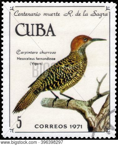 Saint Petersburg, Russia - November 12, 2020: Postage Stamp Issued In The Cuba With The Image Of The