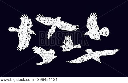 Stock Vector Set Of Soaring Birds Silhouettes With Rough Texture. For Logo And T-shirt Design. White