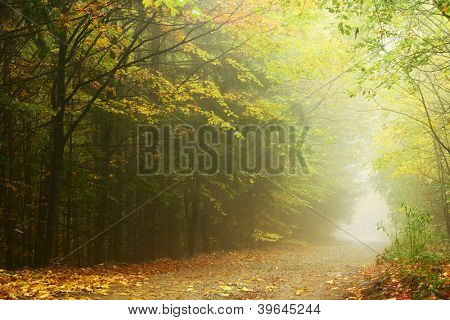 Mountain path in autumn landscape