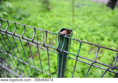 Details With A Snail On A Metallic Fence.