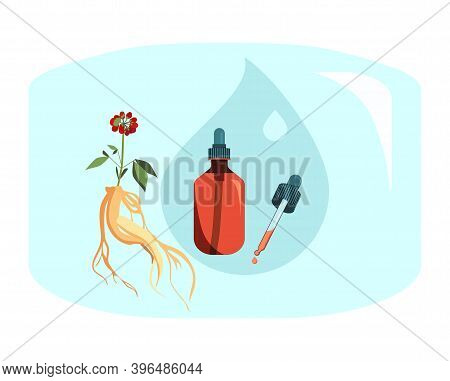 Red Ginseng Root Leaf And Berries. Drug Prolongs Life And Youth.plant Extract For Cosmetology. Elixi