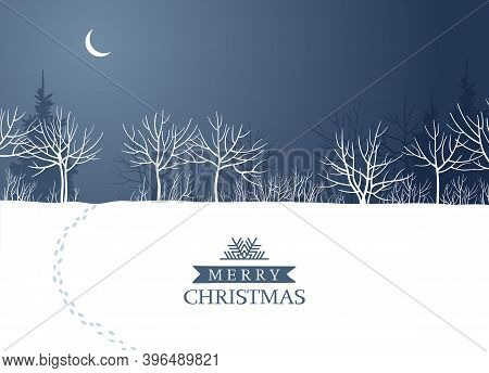 Night Winter Forest In The Moonlight. Vector Background For Christmas Cards, Banners, Posters, Seaso