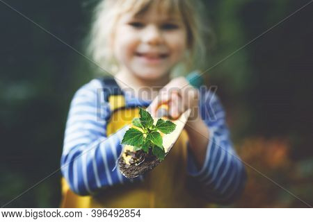 Adorable Little Toddler Girl Holding Garden Shovel With Green Plants Seedling In Hands. Cute Child L