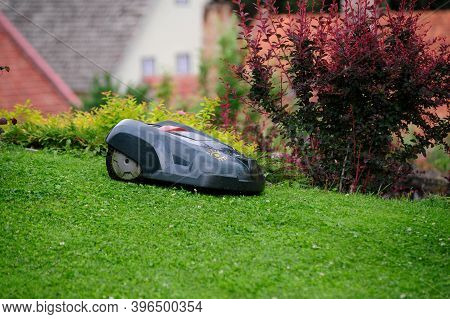 A Lawn Mowing Robot Mowing The Lawn In The Garden