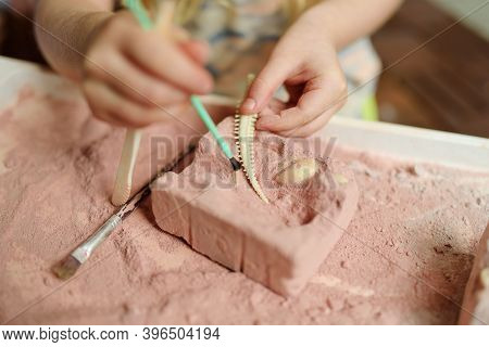Child Digging Out A Dinosaur Toy From A Plaster Mold. Archaeological Games For Children. Exploring T