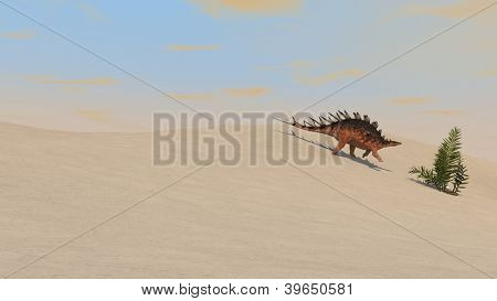 kentrosaurus walking in desert