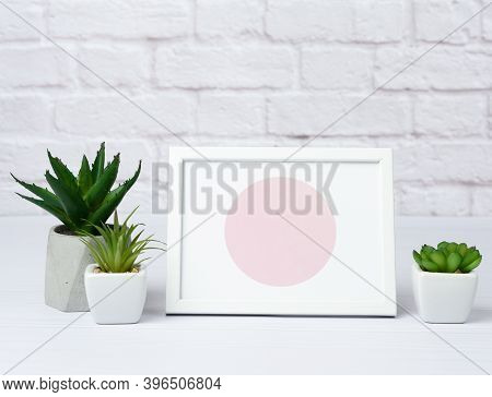 Empty White Wooden Frame And Green Succulents In A Ceramic Pot On A White Wall Background, Minimalis