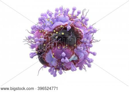 The herpes virus (VZV) causes changes on the skin of the mouth and other parts of the body such as the eyes or skin. 3d illustration
