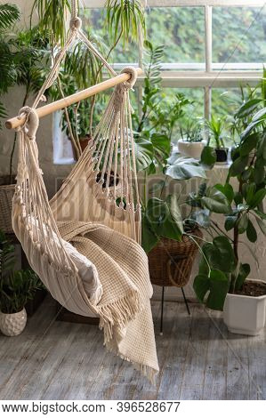 Vertical Photo Of White Rope Swing In Living Room Against Large Window And Green Houseplants In Flow