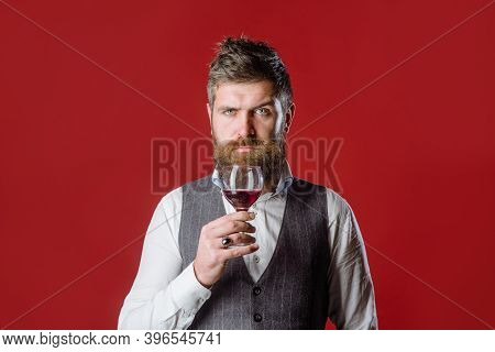 Man With Wine Glass. Bearded Man With Glass Of Wine. Tasting Alcohol. Red Wine. Man Drinks Wine. Man