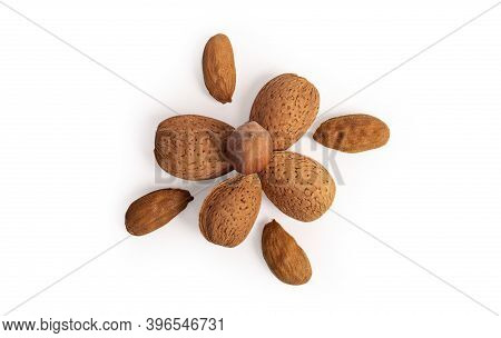 Assorted Nuts Of Almonds And Hazelnuts Natural