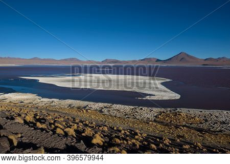The Red Colored Water Filled Laguna Colorada On The Highlands Of Bolivia That Is Home To Many Flamin
