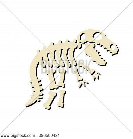 Dinosaur Skeleton. Bones Of A Prehistoric Lizard. The Halloween Element. Archeology And History. Car