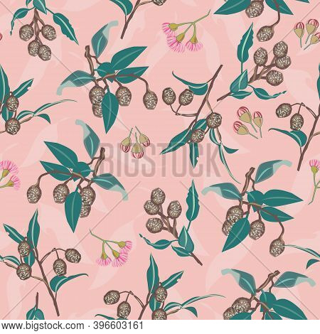 Pink Gumnuts And Eucalyptus Blossom Seamless Vector Repeat Pattern. Vector Illustration Perfect For