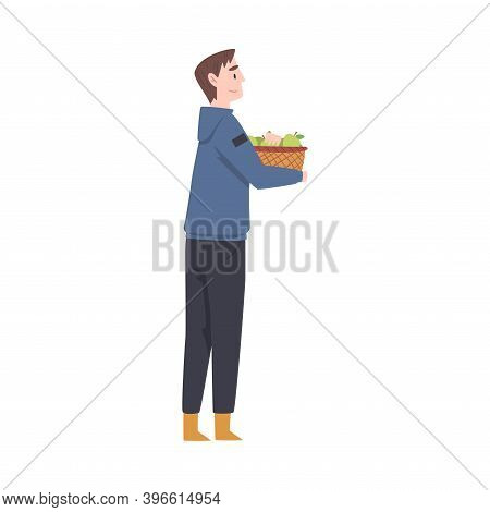 Young Man Carrying Wicker Basket Full With Gathered Apples Vector Illustration