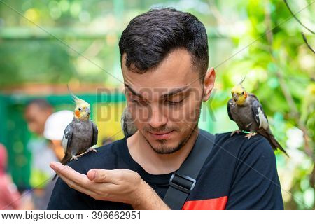 The Guy In The Bird Park Communicates With Parrots. Tame Parrots Beg For Food From Tourists.