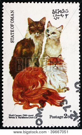 Postage stamp Oman 1973 Cats