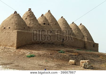 Traditional Houses