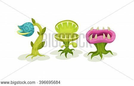 Carnivore Plants Or Monster Flowers As Fantastic Flora Vector Set