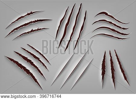 Realistic Animal Claw Scratch. Wild Animal Or Monster Ripped Rough Holes, Beast Claws Scratch Mark.