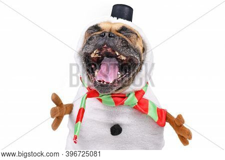 Funny Laughing French Bulldog Dog Dressed Up As Snowman With Full Body Suit Costume With Scarf, Fake