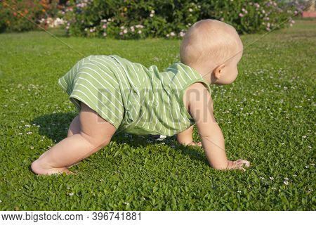 One-year-old Child Boy Crawls On The Green Grass In The Backyard Of The House. First Steps. Child\\\