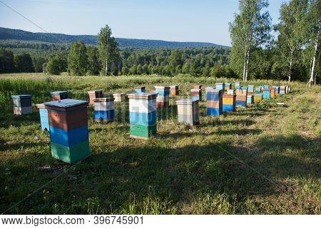 Bashkortostan, Russia. Mountain Apiary. Hives In The Apiary.
