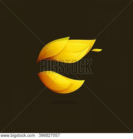 Abstract Sphere Logo With Feather Or Fire Elements. Vector Themplate For Internet Marketing Labels,